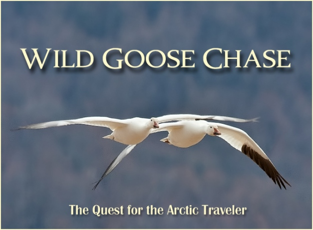 Wild Goose Chase Title Image